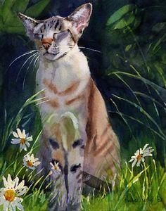 Tiger Tabby Point Oriental Cat Art Print of my von rachelsstudio, $25.00