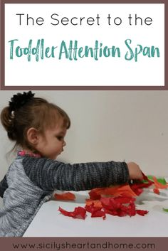 toddler-attention-span