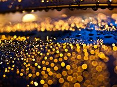 10 Impressive Examples of Rain Photography