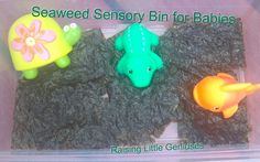 Seaweed Sensory Bin for Babies. Provides new textures for babies to explore