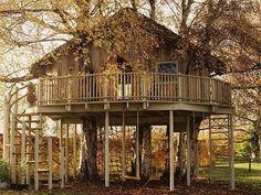 Amazing+Tree+Houses | Amazing Creativity: Amazing Tree House that you love