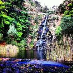 A pleasant half hour walk to the falls, choose the time of year wisely because apparently in winter it is freezing! Part of the Cleland Conservation Park Waterfall Gully provides some great views of the city