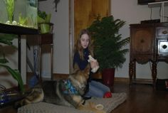 Family Raising Money to Train Dog That Will Alert Others of Girl's Seizures