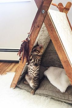 Cat furniture, Cat hammock, Cat scratcher, Cat bowls by CatPlayFurniture Cat Teepee, Cat Hammock, Teepee Bed, Cool Cat Beds, Cool Cats, Diy Cat Bed, Modern Cat Furniture, Pet Furniture, Heated Outdoor Cat House