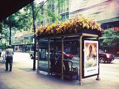 Ideias para pontos de ônibus com telhado verde.
