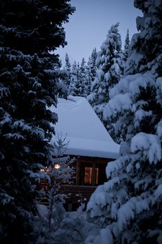 an age old tree. I am stars in white snow.: winter has settled in : january moves into february Winter Cabin, Winter Love, Winter Day, Winter Snow, Winter Christmas, Cozy Cabin, Snow Cabin, Prim Christmas, Cozy Cottage