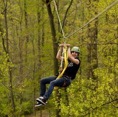zip lining past the treetops