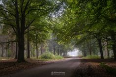 Photography in newest by William Mevissen. Landscape and Nature Photography at www.williammevissen.nl.