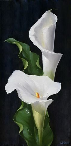 Wonderful Absolutely Free Calla Lily painting Thoughts Calla lilies will be the essential bridal bouquet flower. The actual lamps of this Africa bloom usua