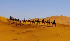 The Morocco desert trip from Tangier to Marrakech 4 days is a good choice for those who want to explore the grounds of the Sahara through authentic cultural experiences such as camel trekking across the sand dunes with Berber guides, eating traditional Moroccan food, sleeping in Nomadic tents in the desert. What is more, this tour also gives you a taste of amazing places such as the blue city of Chefchaouen, the Valley of Roses, the gorges Dades and Todra and the unique Ksar Ait Ben Haddou.