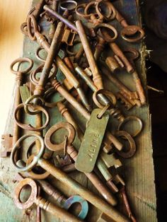 what a great collection of skeleton keys ...