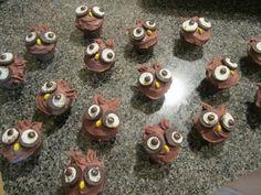 Lil mini owl Cupcakes