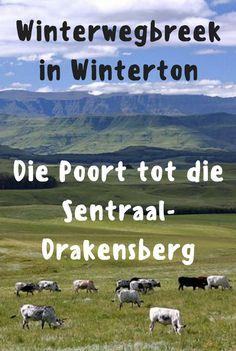 Kom lees waarom Winterton so 'n fantastiese winterbestemming is!