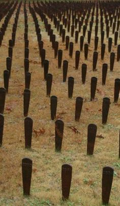 Milledgeville's cemetery for the insane: Visiting the world's most macabre memorial