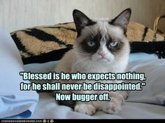 Blessed is he who expects nothing for he shall never be disappointed. Now bugger off!