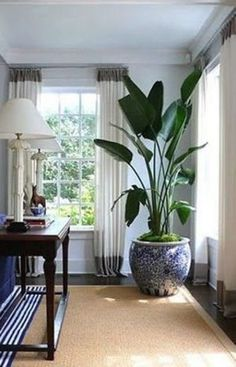 49 Amazing House Plants Indoor Decor Ideas Must - House Plants - ideas of House Plants - Have you ever noticed that some people have homes which are filled with healthy colourful indoor house plants and others[] Big House Plants, Plants For Living Room, Living Rooms, Home Decor With Plants, Living Area, Interior Pastel, Interior Plants, Interior Design, Urban Deco
