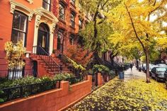 Rainy Autumn days in Brooklyn are some of the best days....