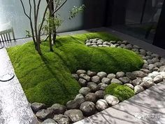 22 Outstanding Japanese Garden Arrangements For Your Outdoor Entertaining Want To Learn More? Visit Us For More Japanese Garden Ideas Back Gardens, Small Gardens, Modern Landscaping, Backyard Landscaping, Landscaping Ideas, Backyard Ideas, Modern Backyard, Indoor Garden, Outdoor Gardens