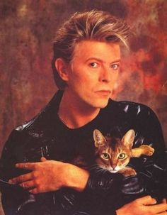 David Bowie in a glamorous picture holding a cat