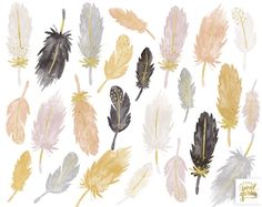 Watercolor Feathers Clipart. Pastel Boho Clip Art. Gold Dipped | Etsy