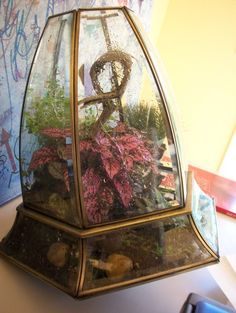 Recycled broken lamp terrarium featuring a bright pink Polka Dot Plant by Kat Geiger of Design Spunk. #terrarium #reuse