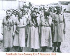 Kratz Family Auschwitz Memorial