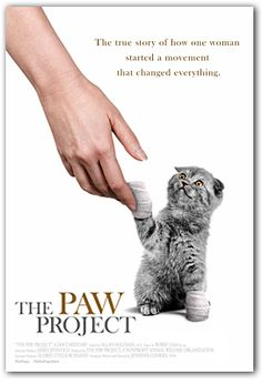 Ban cat declawing - The Paw Project a must watch documentary that will open the public eye to this cruel practice and the lies veterinarians tell to profit from their pain.