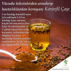 Cellulite Scrub, Learn Turkish, Natural Health Remedies, Healthy Beauty, Kombucha, Natural Medicine, Herbalism, Alcoholic Drinks, Clean Eating