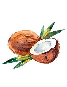 Watercolor Fruit, Fruit Painting, Watercolor Paintings For Beginners, Fruit Art, Art Drawings Sketches, Art Sketchbook, Watercolor Illustration, Cute Art, Painting & Drawing