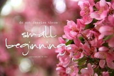 """Do not despise these small beginnings."" Zechariah 4:10 {studioflourish.tumblr.com}"