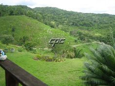 31 Acre Farm for sale in Ontario Village, Belize!