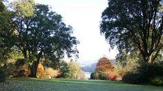 Trelissick Garden Cirnwall, England.
