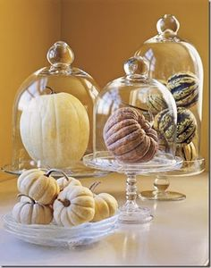 Decor Allure blog: great fall idea made with little pumpkins and glass cake stands. such an easy display.