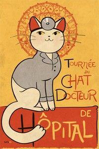Doctor #cat.