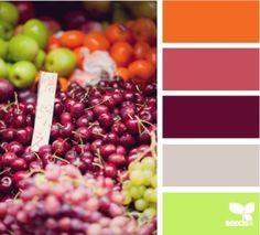 #color #palette by Anix