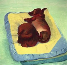 David Hockney, Dog Painting 1995 oil on canvas, Paper: 28 x 29 in x cm), Framed: 29 x 30 in x cm), Private collection David Hockney Artist, David Hockney Paintings, Arte Dachshund, Pop Art Movement, Art Journal Techniques, Animal Projects, Dog Paintings, Museum Of Fine Arts, Dibujo