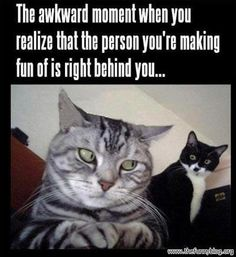 Haha oh man not that I make fun of people frequently but I totally do this all the time when I'm tellin a story about someone and they're right behind me.....awkward..