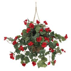 Nearly Natural Begonia Hanging Basket, Red. Certain plants just look great in a hanging basket, and the Begonia is no exception. Best of all, it'll stay beautiful with no dripping water – ever! Silk Plants, Fake Plants, Artificial Plants, Potted Plants, Plants Indoor, Decorative Hanging Baskets, Artificial Hanging Baskets, Begonia, Faux Flowers