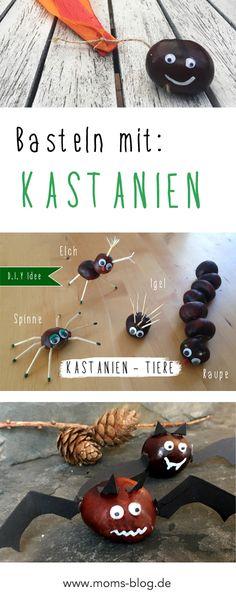 Basteln mit Kastanien! Kastanien Fledermäuse, Kastanien Flieger, Tiere, Elche, Spinnen, etc. http://www.moms-blog.de/kastanien-basteln-ideen/