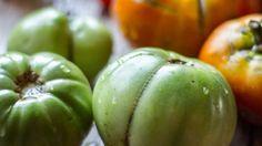 Jardinería en macetas - Aprenda y cultive