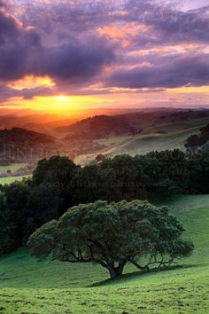 More travel for the bucket list: ~~Briones Sunset ~ sunset light through clouds over oak tree and green hills in spring, Briones Regional Park, Contra Costa County, California by enlightphoto~~ Beautiful Sunset, Beautiful World, Beautiful Places, Beautiful Pictures, Landscape Photography, Nature Photography, Photography Tips, Photography Composition, Iphone Photography
