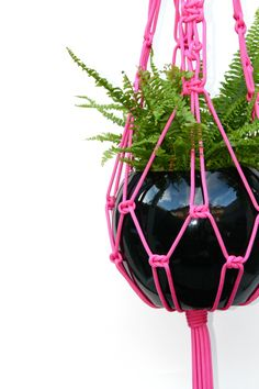 Macrame pot hanger...I remember my mom making these when I was a kid! <3