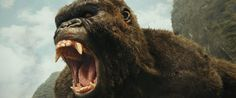 Warner Bros releases Blu-ray details for Kong: Skull Island   The world never belonged to us it belonged to them  One of the biggest (figuratively and literally) monster films to have debuted in 2017 can be yours to own! What seems to be an installment of a much larger universe Kong: Skull Island raked in over $500 million worldwide at the box office.  Warner Bros. Home Entertainment has announced you can own Kong: Skull Island on Ultra HD Blu-ray 3D Blu-ray Blu-ray and DVD on July 18 or own…