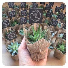 Elif&Yasin#sukulent #succulents #minisukulent #kaktus #cactus #succulentaddicted #succulove #succulentlover #succulentobsession #nikahsekeri #babyshower #disbugdayi #birthdaygift #kurumsalhediye #weddingfavour #nişanhatırası #nişanhediyesi #sözhatırası #sözhediyesi #düğünhediyesi #düğünhatırası #kırdüğünü #love #best #gift #l4l #picoftheday #bestoftheday #vsco #vscocam