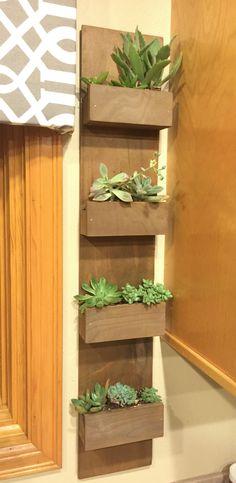 DIY hanging succulent garden wall