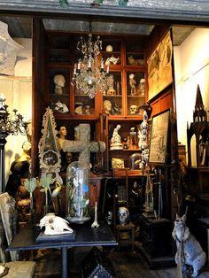 Cabinet de curiosités - can even spot an obelisk Museum Of Curiosity, Curiosity Shop, Curiosity Cabinet, Saint Ouen, Curiosity Killed The Cat, Cabinet Of Curiosities, Witch House, Dark Interiors, Gothic House
