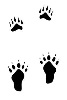 cougar footprint stencil actual size google search animal rh pinterest com Wolf Tracks vs Dog Tracks Wolf Tracks vs Dog Tracks