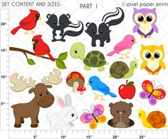 Forest Friends Clipart and Digital Papers - Cliparts - Mygrafico.com