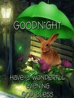 Good Night. God Bless.