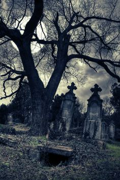 Moonlit graveyard.